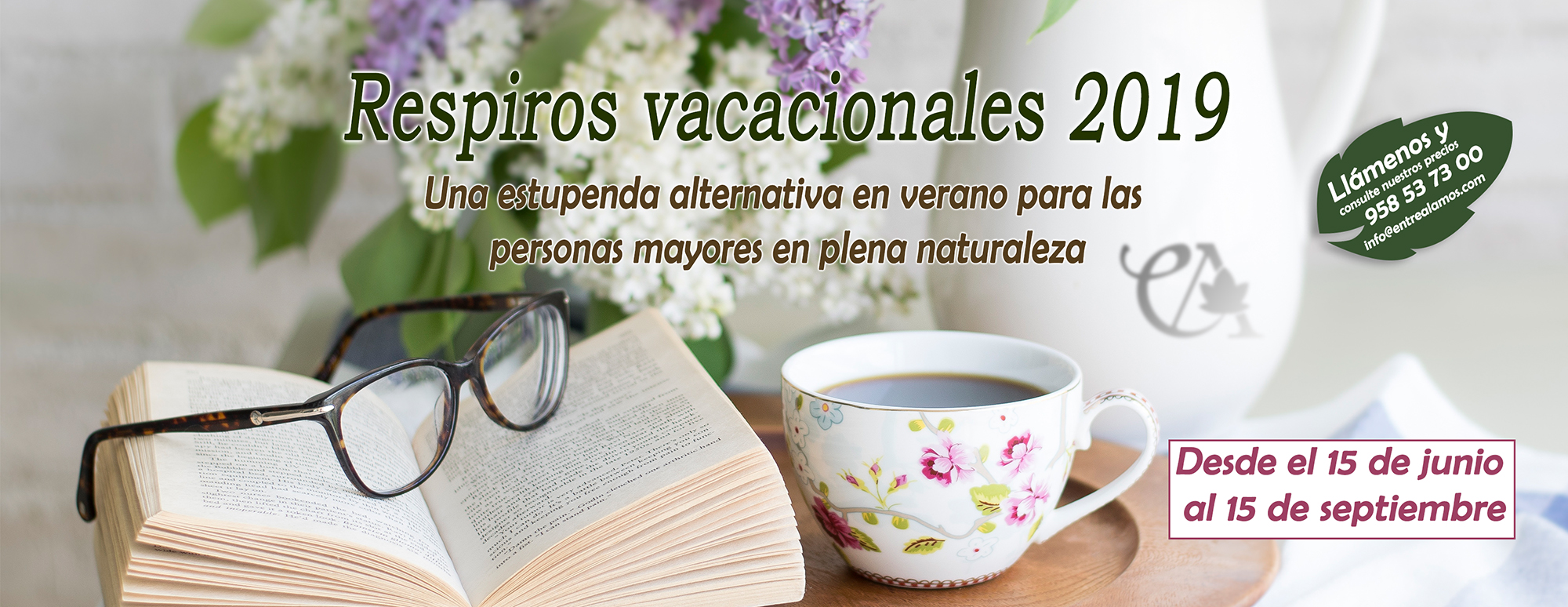 Imagen que muestra un libro, unas gafas, una taza de infusión, con un fondo difuso de un jarrón con flores en tonos blancos y malvas, imagen relajante.